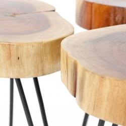 Set de 2 tables basse tronc d'arbre