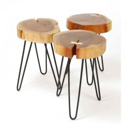 Set de 2 tables basse tronc d'arbre